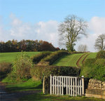 wark_countryside_0025.jpg